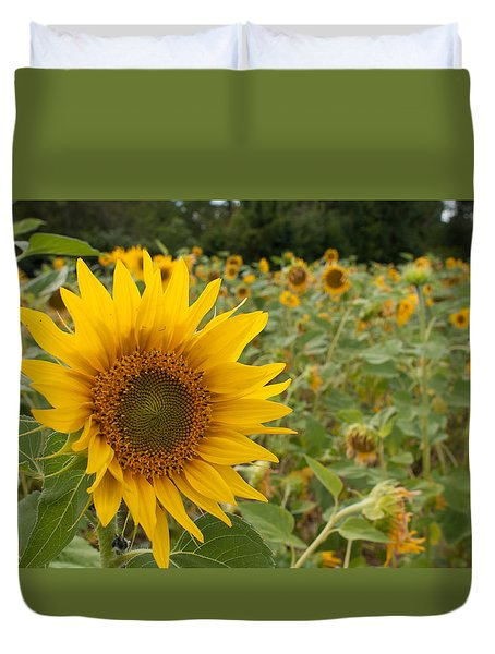 Sun Flower Fields Duvet Cover