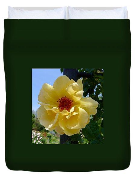 Sunny Yellow Rose Duvet Cover