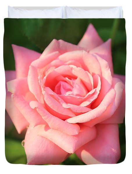 Sweet Pink Rose Duvet Cover by Carol Groenen