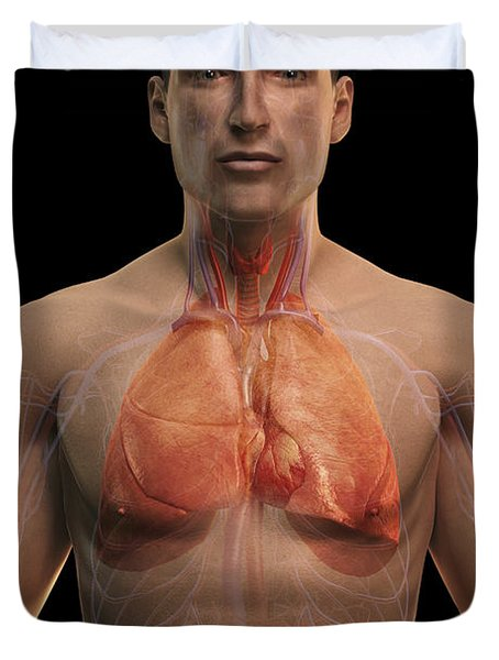 The Respiratory And Cardiovascular Duvet Cover