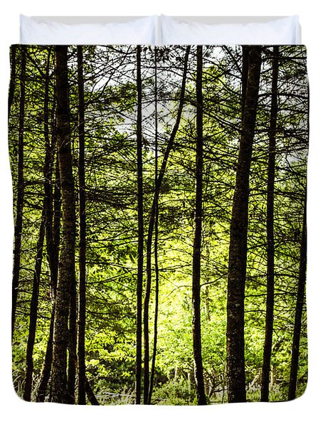 Thru The Trees With John Muir Quote Duvet Cover by Marilyn Carlyle Greiner