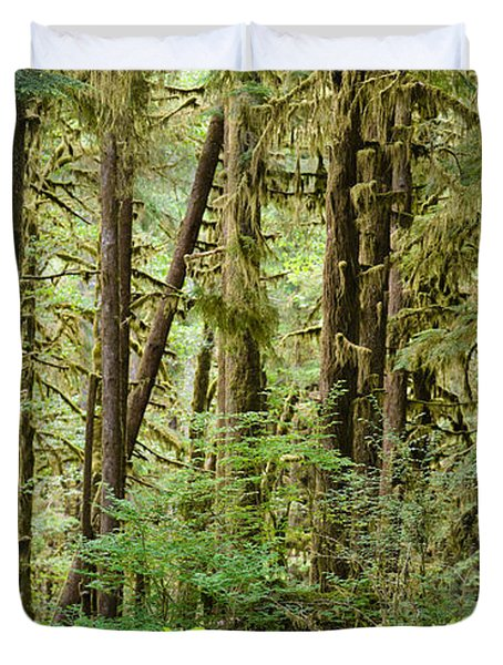 Trees In A Forest, Quinault Rainforest Duvet Cover