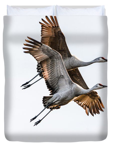 Two Sandhill Cranes Duvet Cover