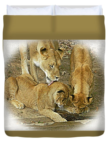 We Are Family - Lioness And Cubs 2 Duvet Cover
