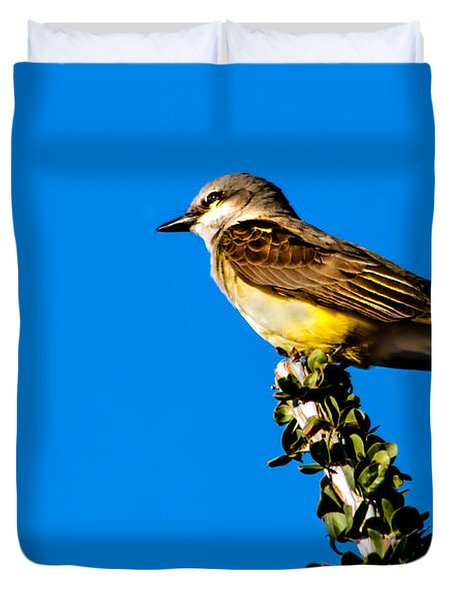 Western Kingbird Duvet Cover by Robert Bales