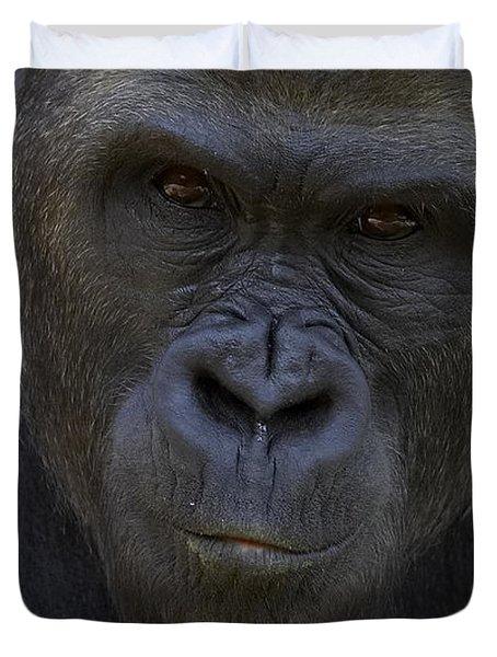 Western Lowland Gorilla Portrait Duvet Cover by San Diego Zoo