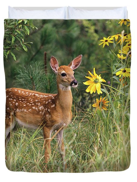 White-tailed Deer Fawn Odocoileus Duvet Cover