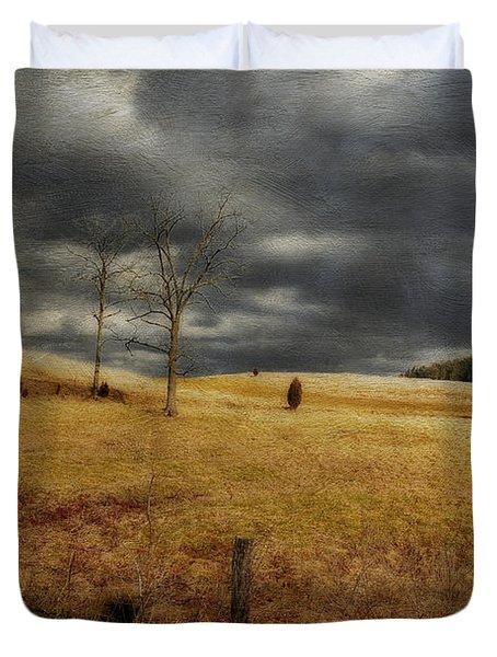 Winter Begins Duvet Cover by Lois Bryan