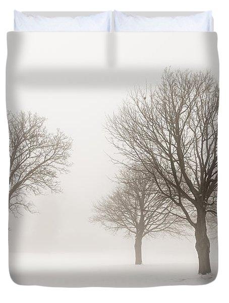 Winter Trees In Fog Duvet Cover by Elena Elisseeva