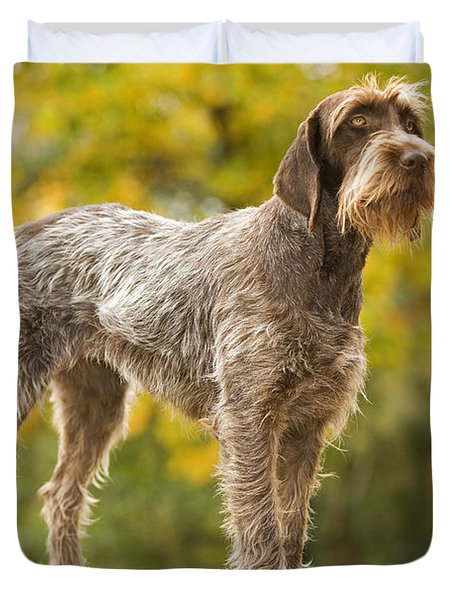 Wire-haired Pointing Griffon Duvet Cover