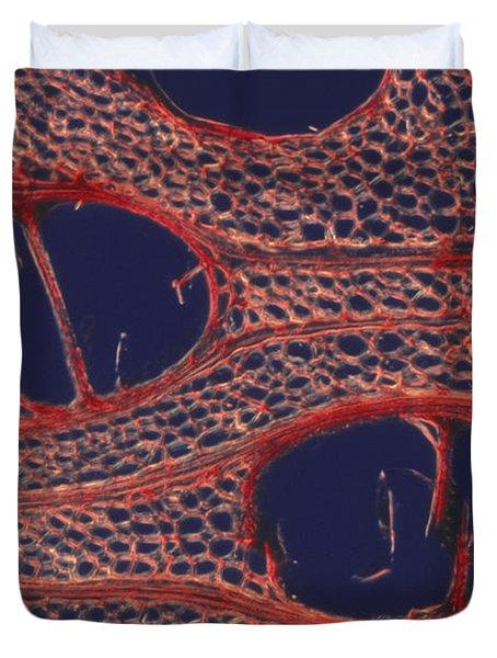 Woody Tissue Duvet Cover