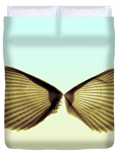 X-ray Of Angel Wing Shells Duvet Cover by Bert Myers