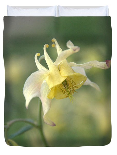 Yellow Columbine Duvet Cover