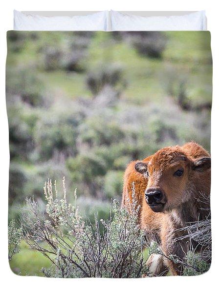 Bison Calf Duvet Cover