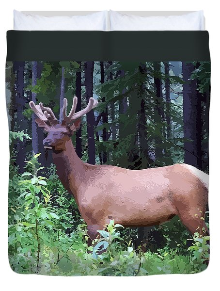 100_0547 Young Bull Elk In Albert Canada Duvet Cover