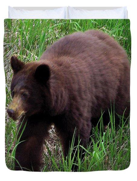 100414 Black Bear Duvet Cover