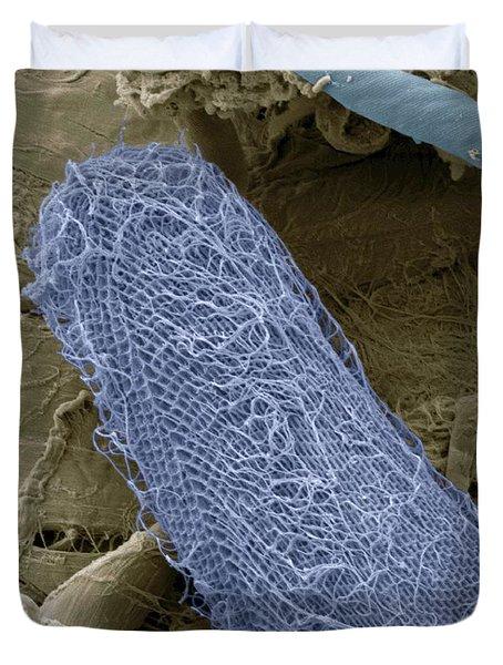 Ciliate Protozoan Sem Duvet Cover by Steve Gschmeissner