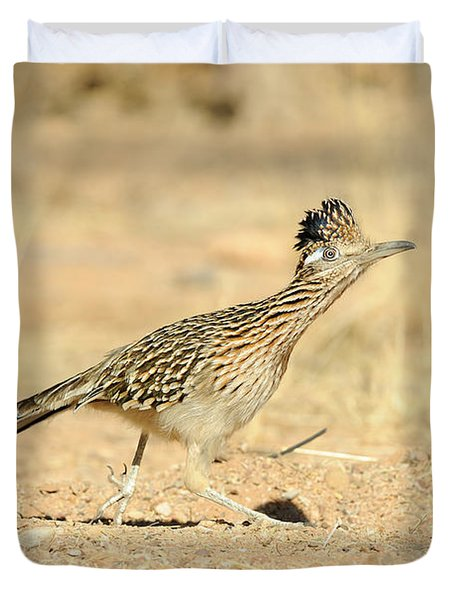 Greater Roadrunner Duvet Cover