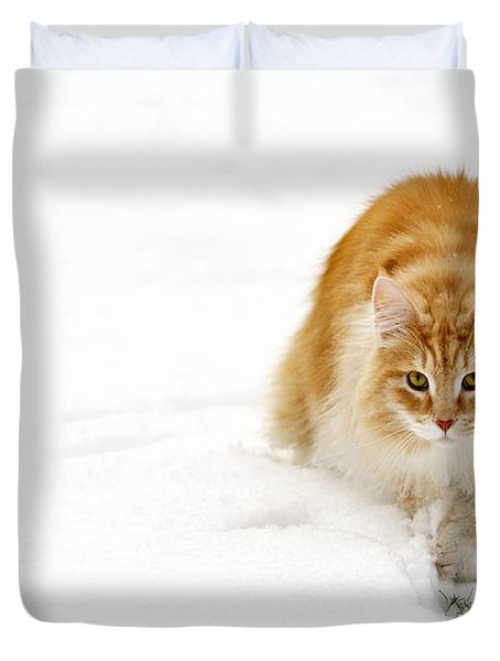 111230p310 Duvet Cover by Arterra Picture Library