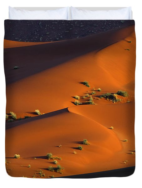 120118p071 Duvet Cover by Arterra Picture Library