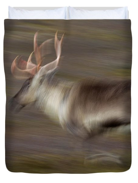 Duvet Cover featuring the photograph 121213p041 by Arterra Picture Library
