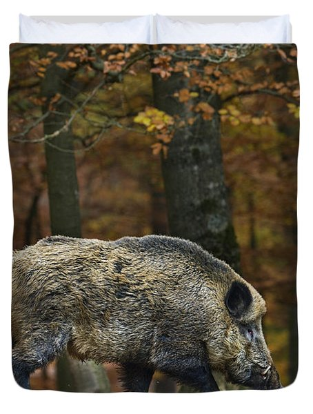 Duvet Cover featuring the photograph 121213p284 by Arterra Picture Library