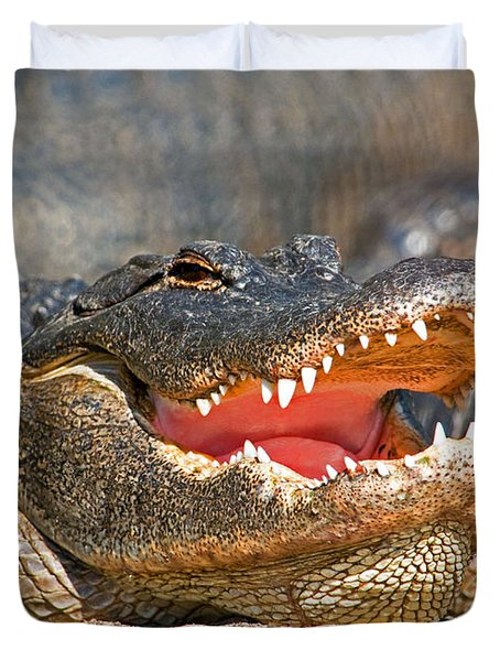 American Alligator Duvet Cover by Millard H. Sharp