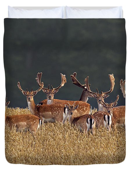 Duvet Cover featuring the photograph 130201p298 by Arterra Picture Library
