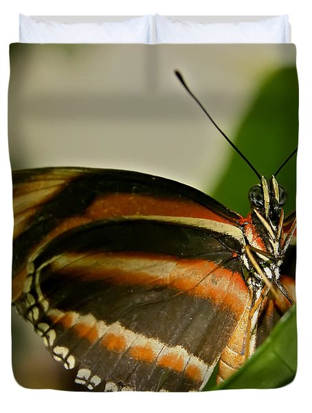 Duvet Cover featuring the photograph Butterfly by Olga Hamilton