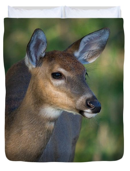 White-tailed Fawn Duvet Cover