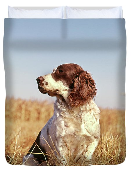 1970s Hunting Dog In Autumn Field Duvet Cover