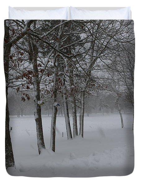 2 2014 Winter Of The Snow Duvet Cover