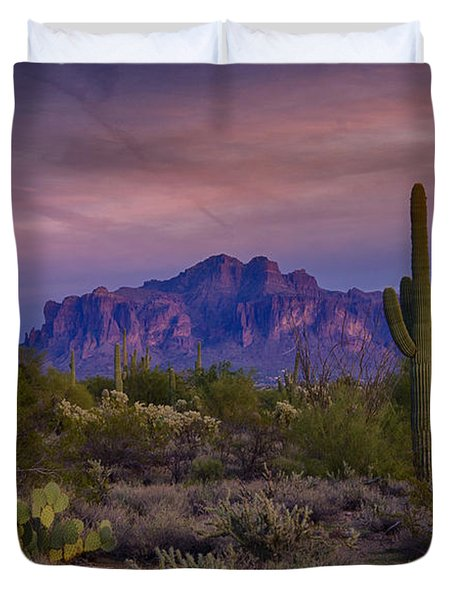 A Beautiful Desert Evening  Duvet Cover