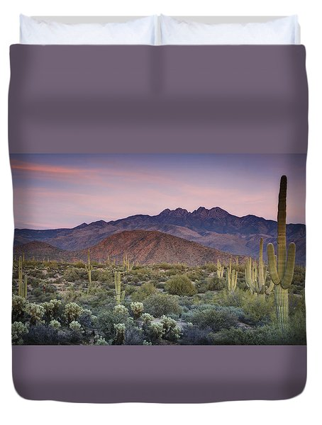 A Desert Sunset  Duvet Cover by Saija  Lehtonen