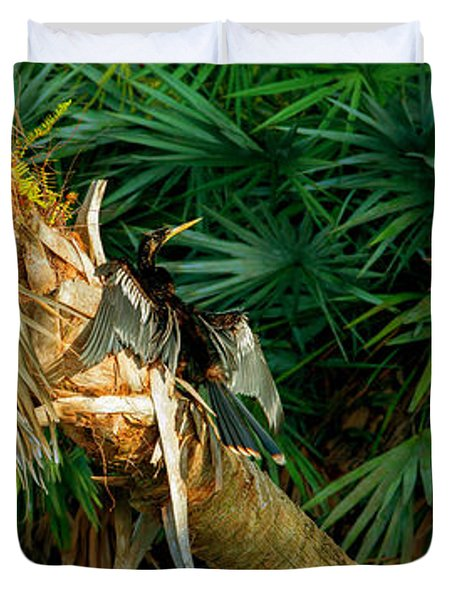 Anhinga Anhinga Anhinga On A Tree Duvet Cover by Panoramic Images