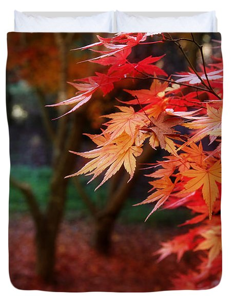 Autumnal Forest Duvet Cover by Les Cunliffe