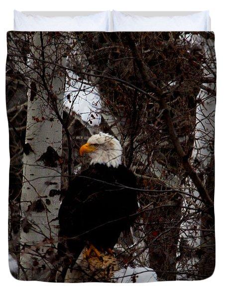 Bald Eagle Duvet Cover by Omaste Witkowski