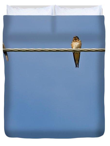 Barn Swallows Duvet Cover by Melinda Fawver