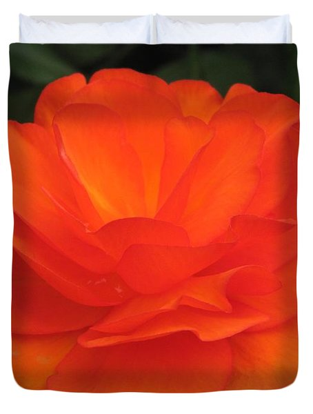 Duvet Cover featuring the photograph Begonia Named Nonstop Apricot by J McCombie
