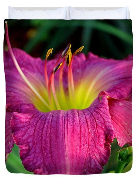Duvet Cover featuring the photograph Bela Lugosi Daylily by Suzanne Stout
