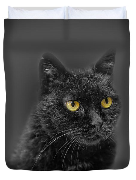Black Cat Duvet Cover by Peter Lakomy