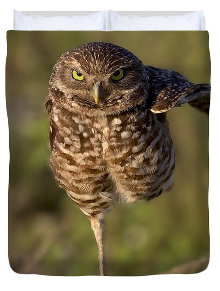Burrowing Owl Photograph Duvet Cover