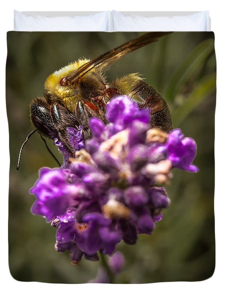 Carpenter Bee On A Lavender Spike Duvet Cover by Ron Pate