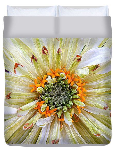 Chrysanthemum Fall In New Orleans Louisiana Duvet Cover by Michael Hoard