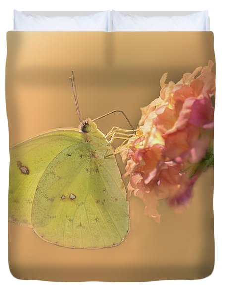 Clouded Sulphur Butterfly Duvet Cover by Betty LaRue