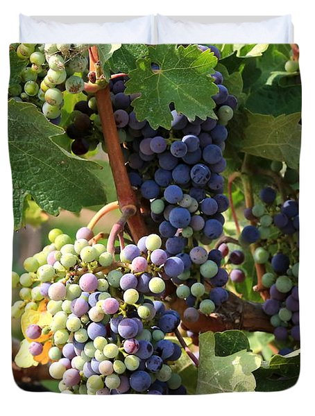 Colorful Grapes Duvet Cover by Carol Groenen
