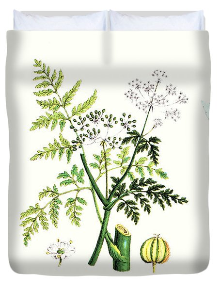 Common Poisonous Plants Duvet Cover by English School