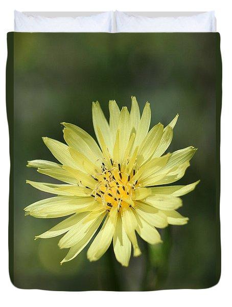 Dandelion Duvet Cover by Ester  Rogers
