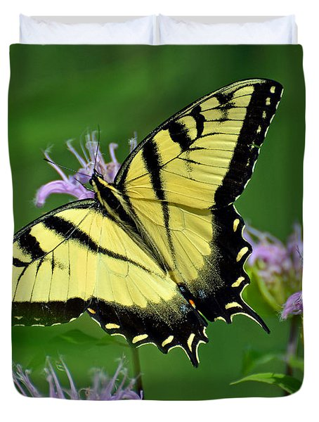 Eastern Tiger Swallowtail Duvet Cover by Rodney Campbell