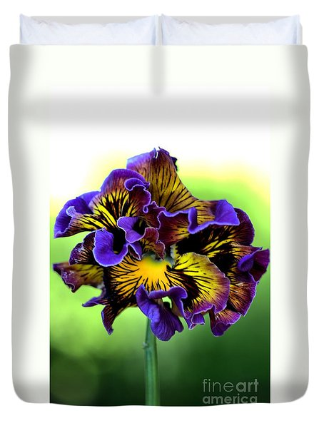 Frilly Pansy Duvet Cover by Joy Watson